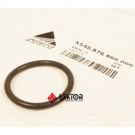 Oring  FENDT ® X548876866000