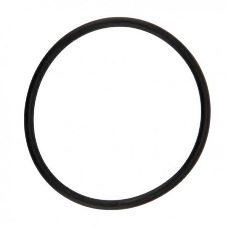 Uszczelka  filtra 316-317 ARAG